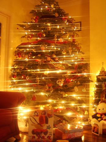 Name:  xmastree.jpg